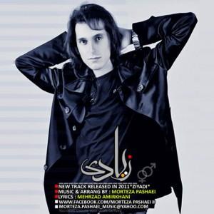 Morteza Pashaei Ziadi 300x300 - متن آهنگ زیادی مرتضی پاشایی