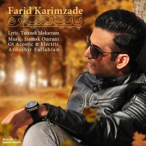 Farid Karimzade Paeiz Nemizare