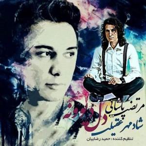 Morteza Pashaei Ft Shadmehr Aghili Dele Divooneh 300x300 - متن آهنگ جدید دل دیوونه شادمهر عقیلی و مرتضی پاشایی
