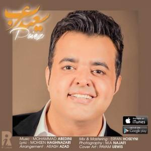 Saeed Arab Paeiz 300x300 - متن آهنگ جدید پاییز سعید عرب