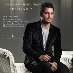 Hamed Mahmoudian Deltangi