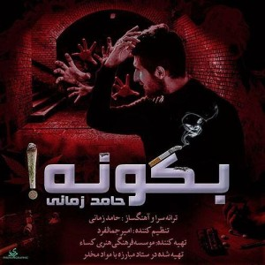 Hamed Zamani Begoo Na 300x300 - متن آهنگ جدید بگو نه حامد زمانی