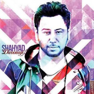 Shahyad Divoonegi 300x300 - متن آهنگ جدید دیوونگی شهیاد