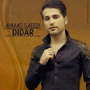 Ahmad Saeedi Didar 300x300 - متن آهنگ جدید دیدار احمد سعیدی