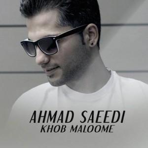 Ahmad Saeedi Khob Maloome