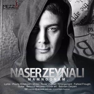 Naser Zeynali Mamnoonam 300x300 - متن آهنگ جدید ممنونم ناصر زینعلی