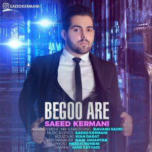 Saeed Kermani Begoo Are 300x300 - متن آهنگ جدید بگو آره سعید کرمانی