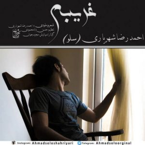 Ahmad Solo Gharibeh 300x300 - متن آهنگ جدید غریبم احمد سلو