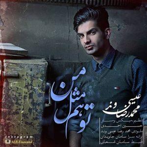 Mohammadreza Eisavand To Ham Mesle Man 300x300 - متن آهنگ جدید تو هم مثل من محمد رضا عیسی وند