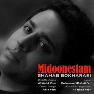 Shahab Bokharaei Midoonestam 300x300 - متن آهنگ جدید میدونستم شهاب بخارایی