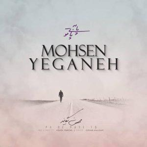 Mohsen Yeganeh Pa Be Paye To 300x300 - متن آهنگ جدید پا به پای تو محسن یگانه
